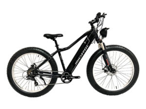 Micargi Steed Fat Tire Electric Mountain Bike