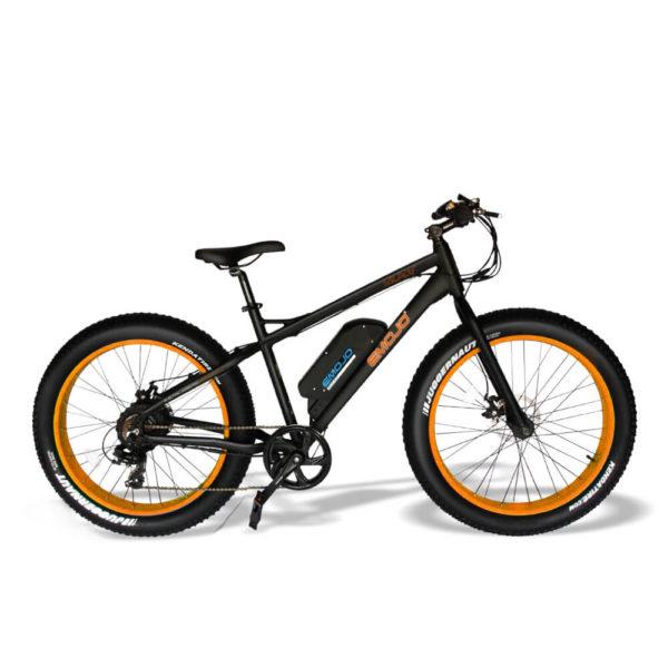 wildcat black orange