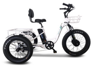 EMOJO Caddy Pro Electric Fat Tire Trike
