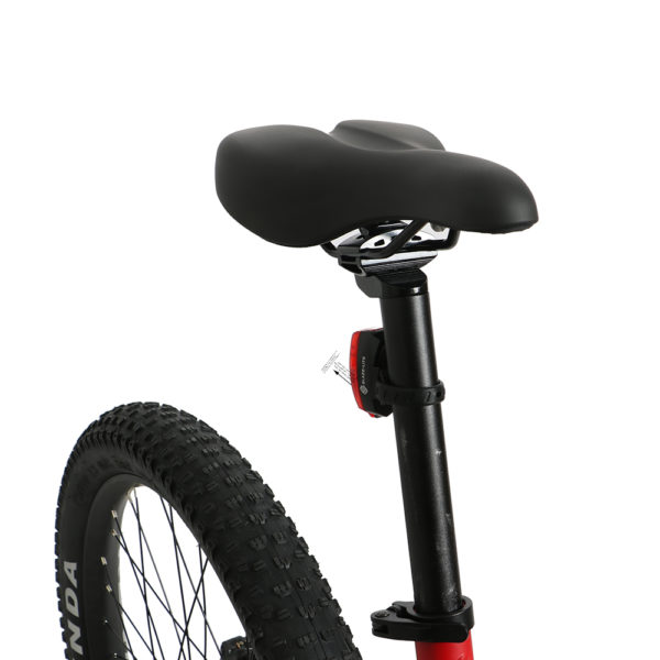 eXcursion Full Suspension Electric Mountain Bike