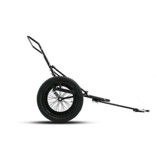Dual wheel eBike Trailer