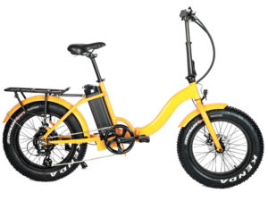 FAT Step 20 eBike Org Right